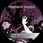 Trident Music Vol. 8 by Various Artists