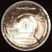Mutacube 02 di Various Artists