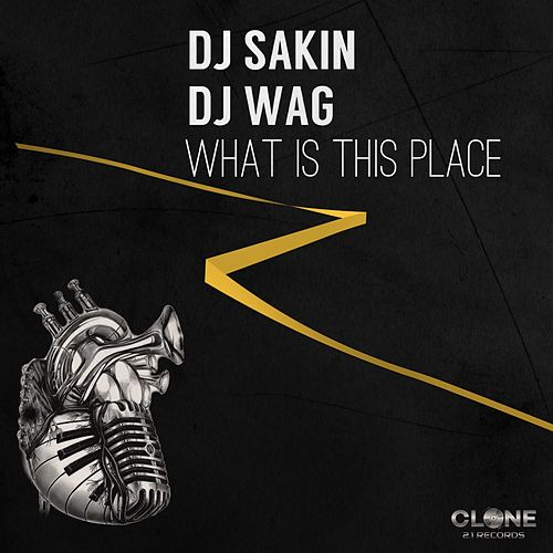 What Is This Place by DJ Sakin