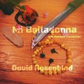 Mi Belladonna / Rainbow Connection de David Rosenblad