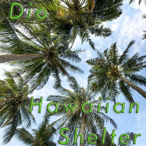 Hawaiian Shelter by Dio