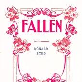 Fallen by Donald Byrd
