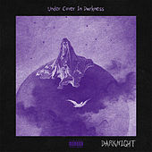 Under Cover in Darkness de Dark Night