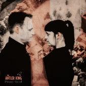 Pixie-Led von The Antler King