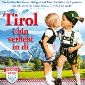 Tirol, i bin verliebt in di van Various Artists