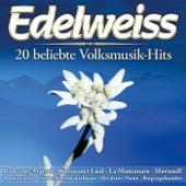 Edelweiss - 20 beliebte Volksmusik-Hits van Various Artists