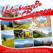 Urlaubsgrüße aus den Bergen von Various Artists