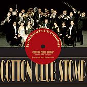 Cotton Club Stomp by The Bratislava Hot Serenaders