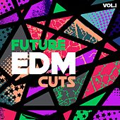 Future EDM Cuts, Vol. 1 de Various Artists