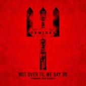 Not Over Til We Say So (Formal One Remix) de Blue Stahli