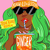 Ginger (Todd Terry Remix) by Riton & Kah-Lo
