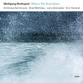 Where The River Goes by Wolfgang Muthspiel