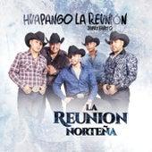 Huapango La Reunión (Zapateadito) by La Reunion Norteña