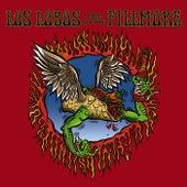 Los Lobos: Live At The Fillmore de Los Lobos