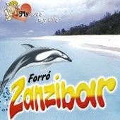 My Love My Life de Forró Zanzibar