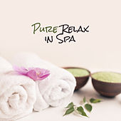 Pure Relax in Spa by Best Relaxation Music