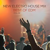 New Electro House Mix Best of EDM, Vol. 02 by Various Artists
