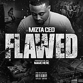 Flawed by Mizta CEO