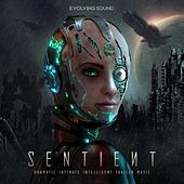 Sentient by Evolving Sound