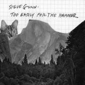 Too Early For The Hammer by Steve Gunn