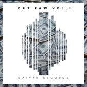 Cut Raw, Vol. 1 di Various Artists