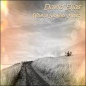 Where Singles Meet von David Elias