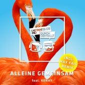 Alleine Gemeinsam (Remixes) von Anstandslos & Durchgeknallt