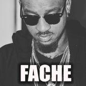 Fache by Kino