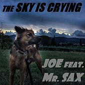 The Sky Is Crying by Joe