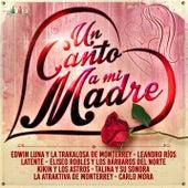 Un Canto a Mi Madre de Various Artists