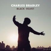 Black Velvet de Charles Bradley