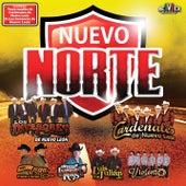 Nuevo Norte de Various Artists