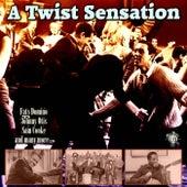 A Twist Sensation von Various Artists