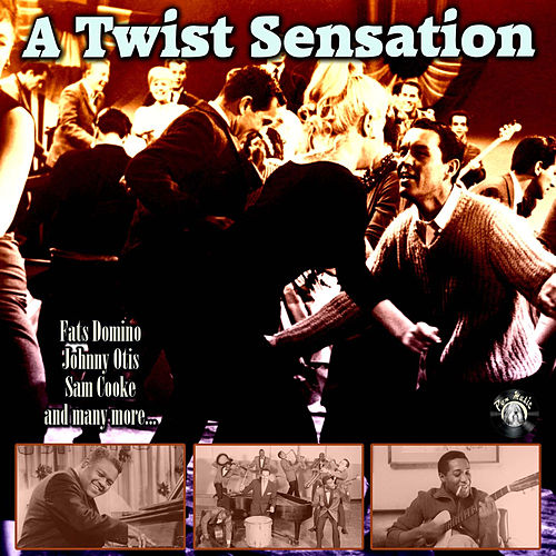 A Twist Sensation von Various Artists