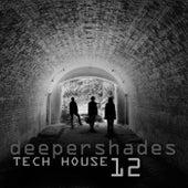 Deeper Shades Tech House 12 von Various Artists
