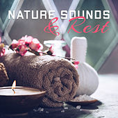 Nature Sounds & Rest de Nature Sounds Artists