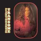 Transome by Planningtorock