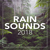 Rain Sounds 2018 - EP by Rain Sounds (2)