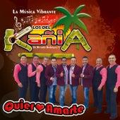 Quiero Amarte by Los de KañiA de Ricardo Rodriguez V.