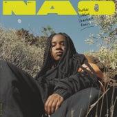Another Lifetime (Shareware Remix) de Nao