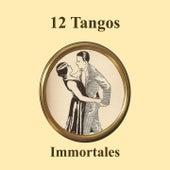 12 Tangos Immortales Medley: Poema / Me Voy a Barajas / Son Cosas del Bandoneón / Ahora No Me Conoces / Despues del Carnaval / Vieja Amiga / Pasional / Los Mareados / Indiferencia / Quiero Verte Una Vez Más / Como Nos Cambia la Vida / Remembranza by Various Artists