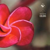 Colors de Sebastian Paul