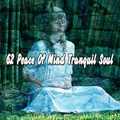 62 Peace Of Mind Tranquil Soul by Classical Study Music (1)