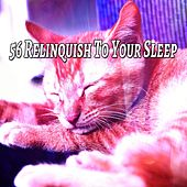 56 Relinquish To Your Sleep de Best Relaxing SPA Music