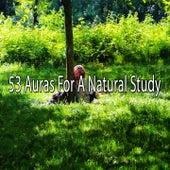 53 Auras For A Natural Study von Massage Therapy Music