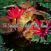 54 Sounds To Relax The Mind de Massage Tribe