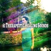 61 Therapeutic Healing Sounds de Meditación Música Ambiente