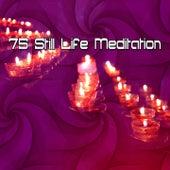 75 Still Life Meditation von Massage Therapy Music