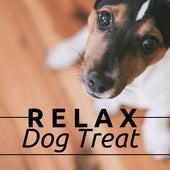 Relax Dog Treat - Top Mix of Relaxing Dog Music de Lullabies Dream