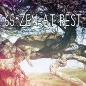 65 Zen At Rest von Best Relaxing SPA Music